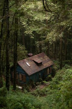 Teal House Brown Trim Cottage In The Woods, Cabins In The Woods, House In The Woods, Forest Cabin, Forest House, Lake Forest, Forest Cottage, Deep Forest, Cabins And Cottages