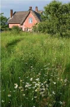 Cottage meadow. if they have a lake nearby it'll be my ideal vacation home