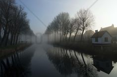 Mist across the Canal - Wall Mural & Photo Wallpaper - Photowall