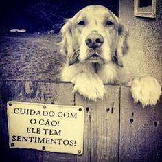 Post  #FALASÉRIO!  : MEU GRANDE AMIGO , É PURO SENTIMENTO !