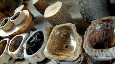Petrified Wood Basins