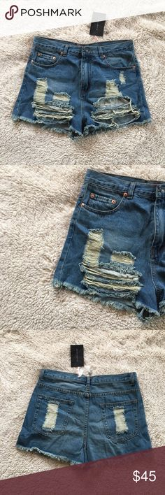 Signature 8 high waisted shorts Signature 8 high waisted shorts. New with tags. Has a trendy distressed look signature 8 Shorts Jean Shorts