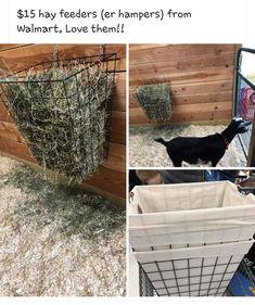 Goat Hay Feeder, Goat Playground, Farm Hacks, Goat Shelter, Goat Pen, Goat House, Horse Barn Plans, Tiny Farm, Goat Care