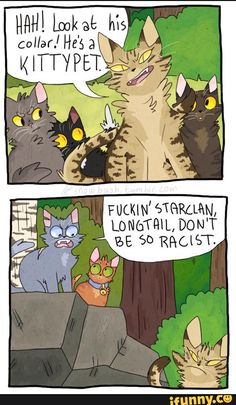warriorcats, tumblr, longtail, bluestar, firepaw