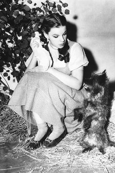 Judy Garland on the set of The Wizard of Oz (1939)