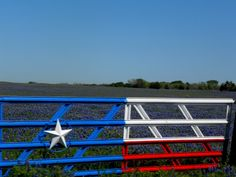 Daytrippin' – To The Ennis Bluebonnet Trail Farm Gate, Farm Fence, Pipe Fence, Texas Crafts, Fire Hall, Driveway Entrance, Blue And Purple Flowers, Ranch Decor, Entry Gates