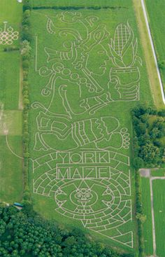 "YORK MAZE, Yorkshire, England: York maze is an award winning, seasonal  attraction that will give your whole family an ""a-mazing"" day out.  You will have an action packed, fun filled day in the country."