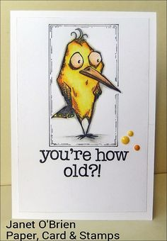 Paper, Card & Stamps: You're how old? Tim Holtz Bird Crazy card