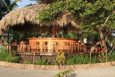 Who says you can't have a little fun after your dive? What a great outdoor bar at the Turneffe Island Resort in Belize!