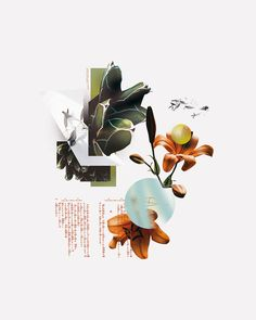 "I'm Marco Vannini ""Mavantri"", a digital collage artist and designer born in Venezuela currently based in Taggia, IT. Collages, Collage Artwork, Collage Artists, Photo Collage Design, Surrealist Collage, Collage Illustration, Photocollage, Photoshop Design, Digital Collage"