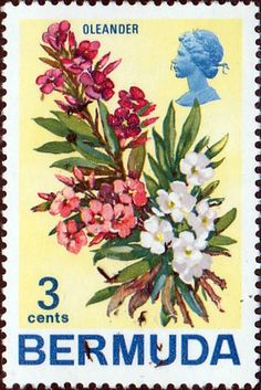 Bermuda 1970 Flowers SG 251 Orleander Fine Mint SG 251 Scott 257 Condition Fine MNH Only one post charge applied on multipule purchases Details