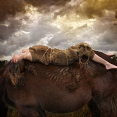 tom chambers photography | portfolio - entropic kingdom