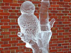 ice scultures owls | ... Sweet Chocolate and Ice Sculpture Festival | Flickr - Photo Sharing