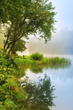 By The Lake Sunrise Landscape Print by Christina Rollo.  All prints are professionally printed, packaged, and shipped within 3 - 4 business days. Choose from multiple sizes and hundreds of frame and mat options.