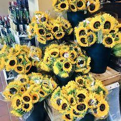 🌻seaaaazon / Sunflower Season SEV Cities