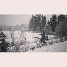 Our Winter Wonderland! #nitalakelodge #whistler #winter