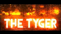 The Tyger - A Short Animated Film