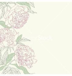 Hand drawing tenderness peony flowers frame vector 1183265 - by bellflower on VectorStock®