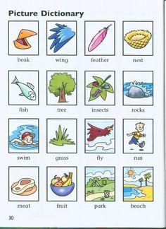 english german visual dictionary pdf