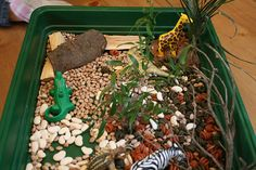 The Imagination Tree: 30 Days to Hands on Play Challenge: Small World Play Sensory Activities, Infant Activities, Sensory Play, Animal Activities, Sensory Boxes, Sensory Table, Preschool Jungle, Jungle Crafts, Jungle Theme