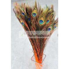 "Dyed Orange Peacock Eye Feathers 30-35"" 12 Pieces Wholesale by dozens or bulks for wedding Centerpieces Crafts arts DIY Events and Stage Performance Decorations"