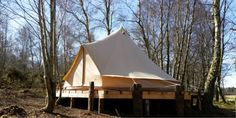 One of the three beatiful Bell Tents on a wooden platform in the Ancient Woodlands at Ace Adventure.