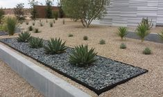 Image result for landscape front yard with ditch