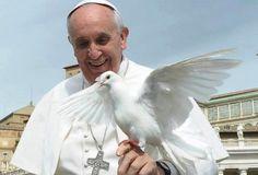 VIDEO: El Papa protagoniza entrañable momento con dos palomas en San Pedro