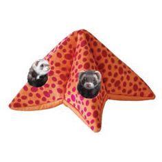 https://www.monfufu.com/habitat-pour-furets/271-aire-jeu-etoile-mer-marshall-furet.html  Aire de jeu étoile de mer pour #furets #marshall #monfufu.com