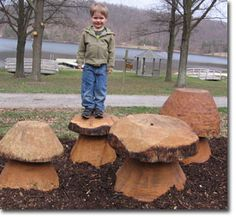 New mushrooms carved from wood at Greenbriar State Park