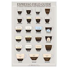 16 x 20 Espresso Field Guide Poster
