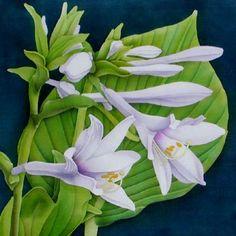 Silk Painting Hosta Plantaginea