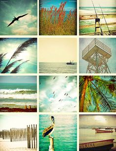 At The Beach - Set of 12 5x5 size photography prints beachy beach lovers bird scenes ocean sea water vacation home decor wall art tropical. $41.00, via Etsy.