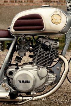 ..._Moto-Mucci: BUILDS: 1981 Yamaha SR250 on BikeEXIF!..honda gas tank