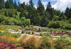 humboldt botanical gardens in eureka