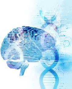 Can Genes Be Blamed for Criminal Behavior?