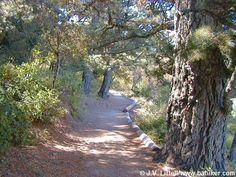 Skyline Ridge Preserve