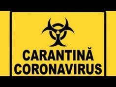 stand up carantina 2020 Stand Up, Get Back Up