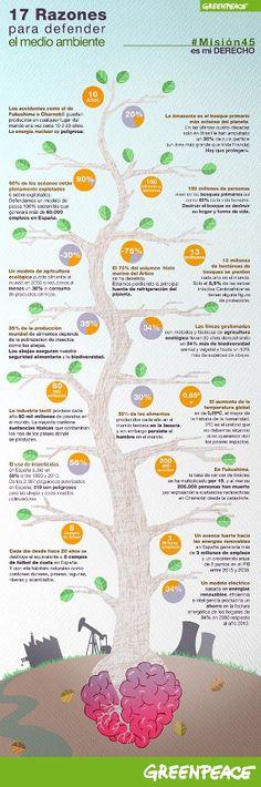 17 razones para defender el medio ambiente | Greenpeace España