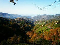 Ve ben yeşilin her tonuna sahip bir köye aitim. #çoközlenilensehir #rize