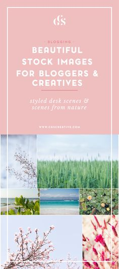 Where to find beautiful & unique stock photos for bloggers and creatives. Styled stock and natural scenes for use on websites, blog posts, social media graphics and so much more! From CGScreative.com