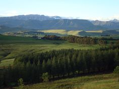 Underberg, South Africa Places Ive Been, South Africa, Birth, Mountains, Travel, Xmas, Viajes, Being A Mom, Trips
