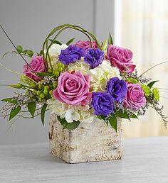 Countryside Elegance (1-800-Flowers in Fairfax, VA)