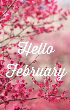 Hello February Welcome Wallpaper Calendar Pictures Good Morning Night