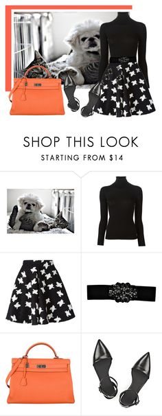 """""""Pets"""" by souzaelaine ❤ liked on Polyvore featuring ColoredPrints, Ermanno Scervino, Boohoo, Hermès and Alexander Wang"""