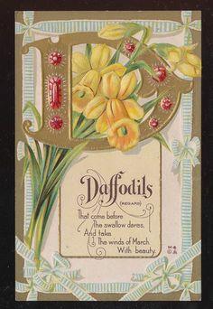 "Nash Flower Alphabet ""D "" Daffodils Floral Meaning Emb.Greeting Postcard-ccc424"