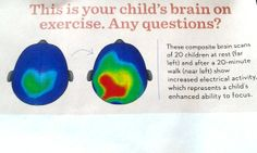 brain on exercise Human Development, Always Learning, Kids Corner, Our Body, To Focus, Your Child, Health And Wellness, Brain, Childhood