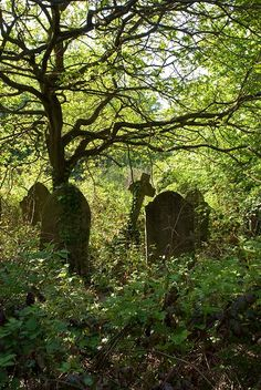Linden Graveyard - a crumbling Victorian cemetery