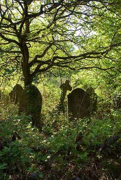 Linden Graveyard - a crumbling Victorian cemetery