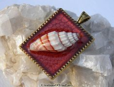 White red small seashell pendant Marsala nature inspired jewelry Little present…